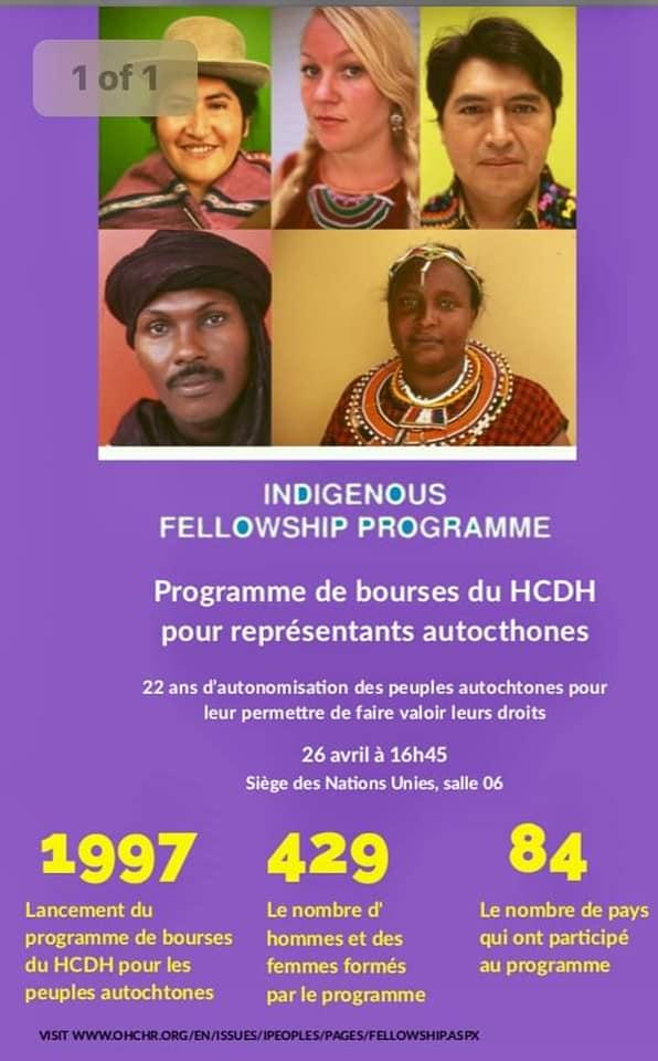 UNPFII 18: Daily programme - DOCIP