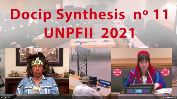 Photo en ligne de la synthèse n°11