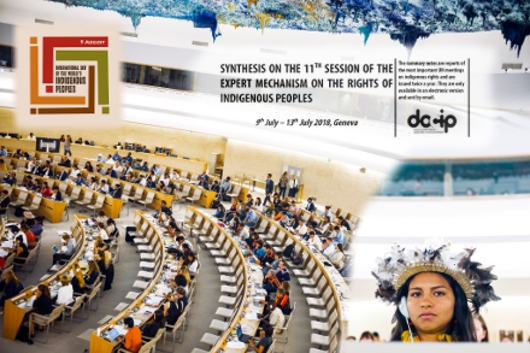 Photo: Docip Synthesis nº7 on the 11th session of EMRIP