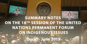 Photo: Docip Synthesis nº8 on the 18th session of the UNPFII