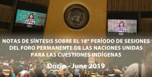 Photo: Nota de síntesis del Docip nº8 sobre el 18º período de sesiones del Foro Permanente (UNPFII)