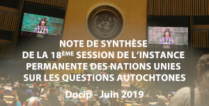 Photo: Synthèse nº8 du Docip sur la 18ème session de l Instance Permanente (UNPFII)