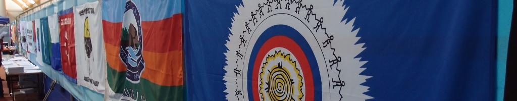 Инвалиды, принадлежащие к коренным народамВ основе лежит Декларация ООН о правах коренных народов