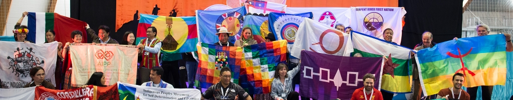 Soutenir les projets du DocipSoutenez notre travail pour la participation des Peuples Autochtones sur les scènes internationale et européenne