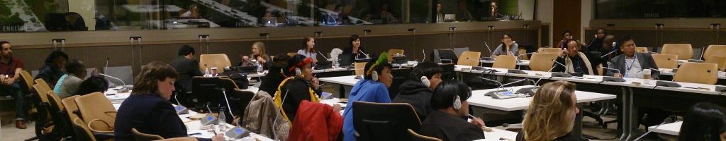 Renforcement de capacitésSe former en matière de promotion et de défense des droits des Peuples Autochtones pour ensuite agir comme agent multiplicateur dans sa communauté