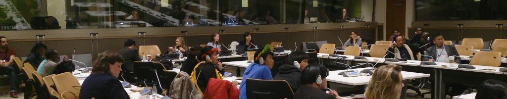 Nos services-solutionsUne collaboration de près avec les Peuples Autochtones pour leur travail à l'international
