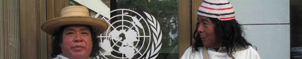 Fondos para los pueblos indígenasDescubra las posibilidades de apoyo financiero de las Naciones Unidas y de otras organizaciones