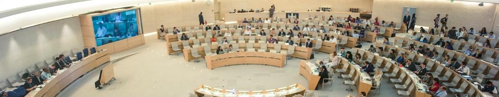 Экспертный механизм по правам коренных народовФорум для коренных народов, который проходит один раз в год в Женеве (Швейцария)