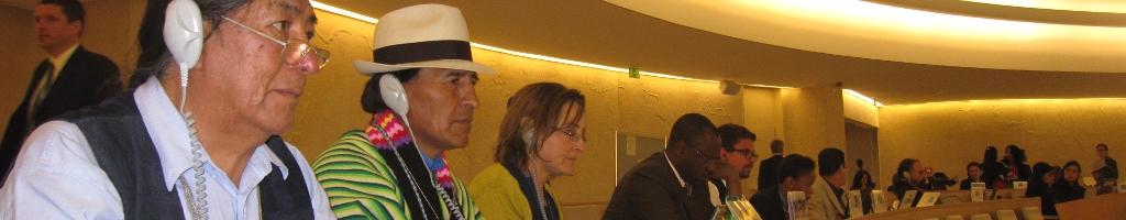 Programas, instituciones e instrumentos jurídicos internacionales relacionadosDescubra aquí a qué programas, instituciones o instrumentos jurídicos dirigirse para promover y defender los derechos indígenas