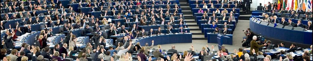 El sistema de la UEDebido a su estructura parlamentaria, el sistema europeo ofrece numerosas especificidades y posibilidades de acción con respecto al sistema de las Naciones Unidas.