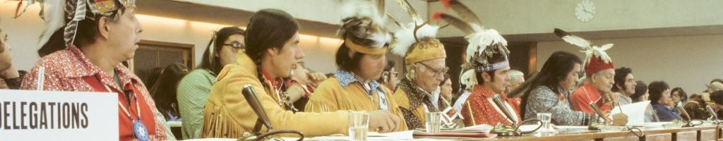 Histoire orale et mémoireL'histoire du processus international des Peuples Autochtones racontée par les aînés et portée par les jeunes autochtones d'une façon créative pour les générations futures : la transmission de l'oralité exprimée via des ateliers sur le terrain