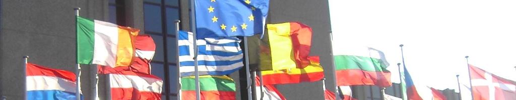 Pueblos indígenas en la UEEl Parlamento europeo y la Comisión europea apoyaron la creación de la Oficina del Docip en Bruselas a fin de facilitar la colaboración entre los pueblos indígenas y las instituciones europeas. Esta sección presenta nuestras actividades en la Unión Europea.